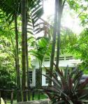 Rental House Jakarta