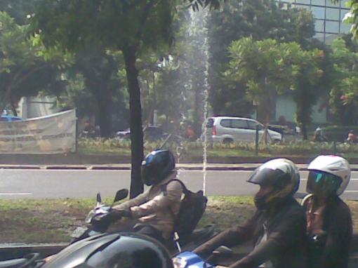 Tart of Jakarta
